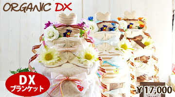 オーガニック3段DX