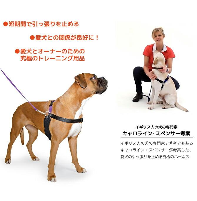 短期間で引っ張りを止める! 愛犬との関係が良好に! 愛犬とオーナーのための究極のトレーニング用品! イギリス人の犬の専門家 キャロライン・スペンサー考案のハーネス!