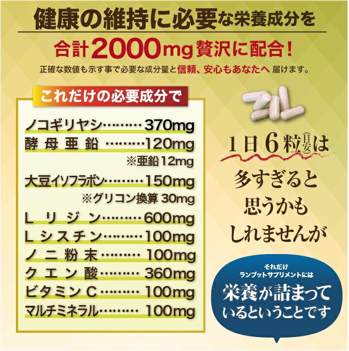 ランブットサプリメント商品説明画像21