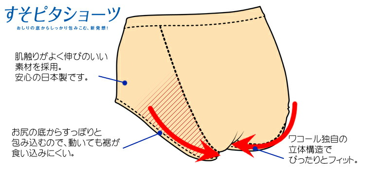 【Wacoal ワコール】☆ 10%OFF すそピタショーツ レーシィ(ハーフ/ハイカット) PPB502
