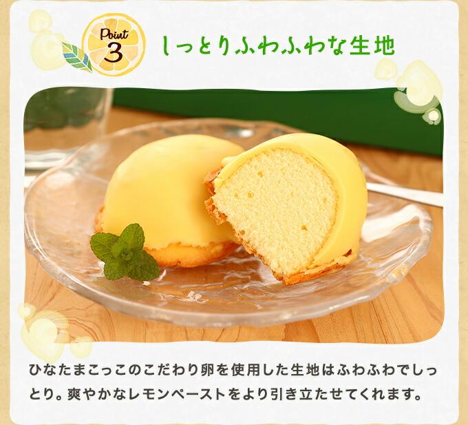 レモンケーキ11