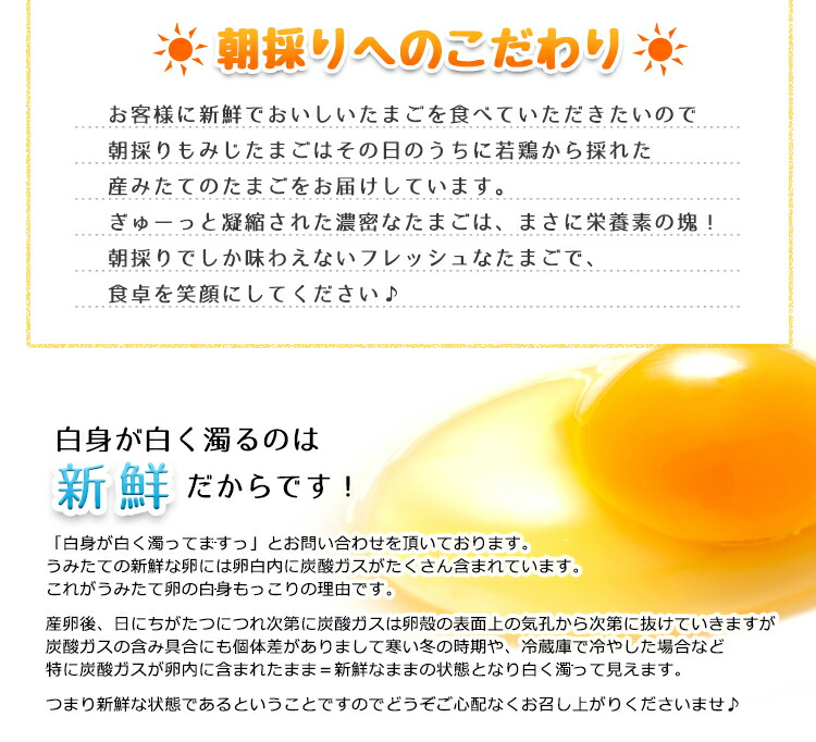 商品画像05