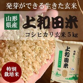 山形県産特別栽培米コシヒカリ玄米