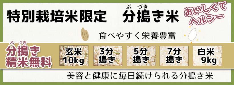 分搗き米【精米無料】