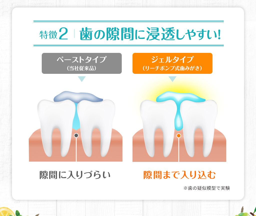 歯の隙間に浸透しやすい!