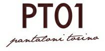 pt01_logo