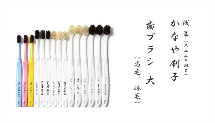 歯ブラシ(大)