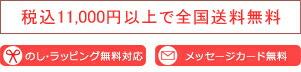 10,000円(税抜)以上で全国送料無料