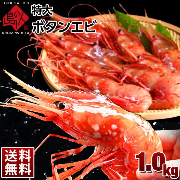 特大プリプリ ボタンエビ 1kg 18-22尾【送料無料】