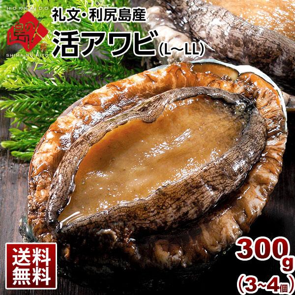 礼文・利尻島産 活島アワビ L~LLサイズ 300g(3~4個)