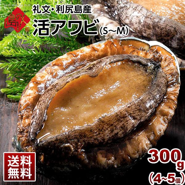 礼文・利尻島産 活島アワビS~Mサイズ 300g(4~5個)
