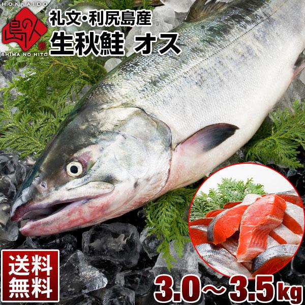 【期間限定価格】生秋鮭(礼文・利尻島産)オス 大3.0~3.5kg 送料無料