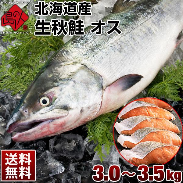 北海道産 生秋鮭 オス 3.0~3.5kg 送料無料