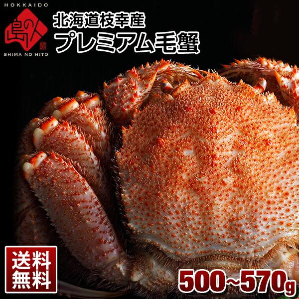 北海道 枝幸産 プレミアム毛蟹 500g-570g【送料無料】