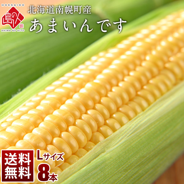 北海道産 とうもろこし あまいんです Lサイズ(380gアップ) 8本(3kg以上) とにかく甘い!【送料無料】【産地直送】