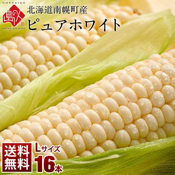 北海道 南幌町産 とうもろこし ピュアホワイト Lサイズ(380gアップ)16本 生で食べても甘い!【送料無料】【産地直送】