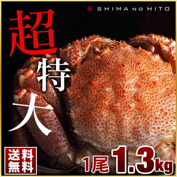 ロシア産 特大毛蟹 (姿) 1尾 1.3kg【送料無料】