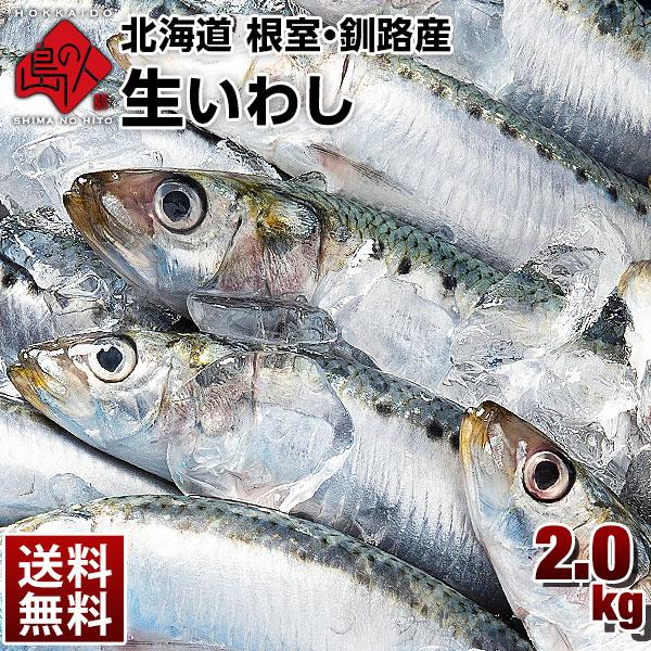 【9月27日お届け】極上の脂乗り 生トロいわし(真イワシ) 2.0kg(20~25尾前後) 大サイズ 北海道産