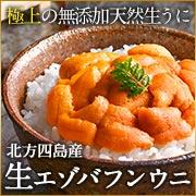 北海道産生秋鮭銀聖