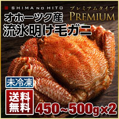 【祝・水揚げ開始】【送料無料】北海道オホーツク産 流氷明け毛蟹 450-500g 2尾