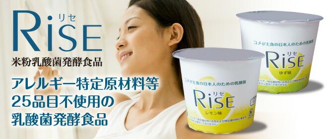 米粉乳酸菌発酵食品