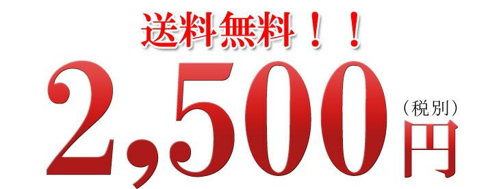 送料無料・2500円