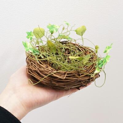 【楽天市場】クオリス 小鳥のための皿巣 鳥 巣箱・ …