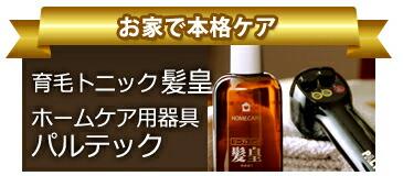 育毛トニック髪皇 ホームケア用器具パルテック