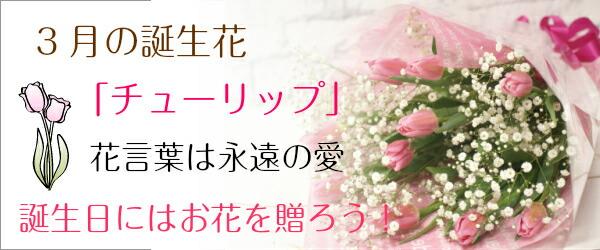 3月誕生花はこちら