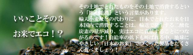 五大アレルギー物質不使用★「グルテン・フリー・ヌードル」お米のうどん(玄米)★蒸気殺菌で6か月間保存可能【100%国内産生玄米粉麺】