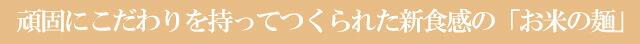 期間限定5%OFF!五大アレルギー物質不使用★お米の生パスタ【100%国内産生米粉麺】
