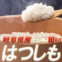 お歳暮ギフトに最適♪もちろん送料無料!新米!幻の米といわれる平成22年岐阜県産ハツシモ10kg(5kg×2)【smtb-tk】