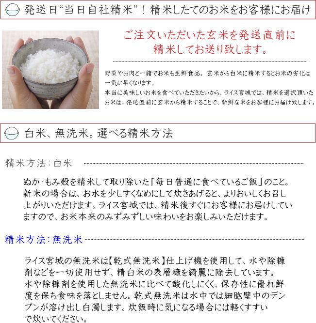 平成29年度宮城県登米産ササニシキ 白米27kg/無洗米26kg 小分け仕様も選べます
