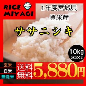 令和1年度産 新米 宮城県登米産ササニシキ10kg 玄米/白米/無洗米