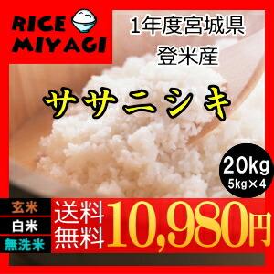 令和1年度産 新米 宮城県登米産ササニシキ20kg 白米/無洗米