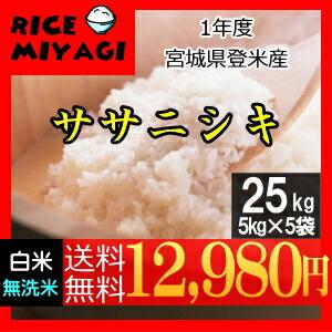 令和1年度産 新米 宮城県登米産ササニシキ25kg 白米/無洗米