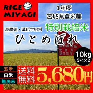 30年度産 新米 宮城県登米産 特別栽培米ひとめぼれ10kg 玄米/白米/無洗米