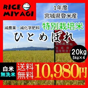 30年度産 新米 宮城県登米産 特別栽培米ひとめぼれ20kg 白米/無洗米