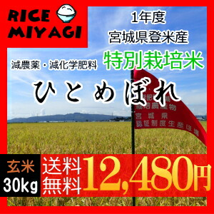 30年度産 新米 宮城県登米産 特別栽培米ひとめぼれ30kg 玄米