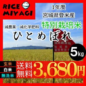 30年度産 新米 宮城県登米産 特別栽培米ひとめぼれ5kg 玄米/白米/無洗米