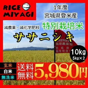 30年度産 新米 宮城県登米産 特別栽培米ササニシキ10kg 玄米/白米/無洗米