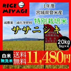 30年度産 新米 宮城県登米産 特別栽培米ササニシキ20kg 白米/無洗米