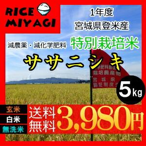 30年度産 新米 宮城県登米産 特別栽培米ササニシキ5kg 玄米/白米/無洗米