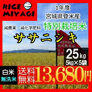 30年度産 新米 宮城県登米産 特別栽培米ササニシキ25kg 白米/無洗米
