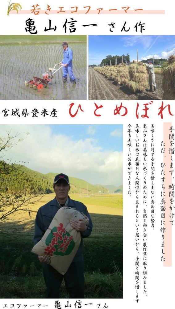 亀山信一さんの人柄がお米にも出ている真面目で優しく惜しいお米です