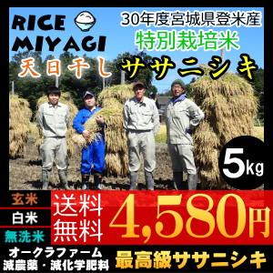 30年度産 新米 宮城県登米産 天日干し特別栽培米ササニシキ5kg 玄米/白米/無洗米