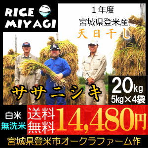 30年度産 新米 宮城県登米産 天日干し特別栽培米ササニシキ20kg 白米/無洗米