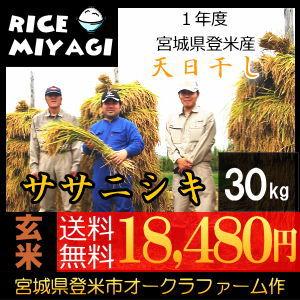 30年度産 新米 宮城県登米産 天日干し特別栽培米ササニシキ30kg 玄米