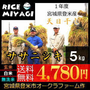 新米 宮城県登米産 天日干し特別栽培米ササニシキ5kg 玄米/白米/無洗米