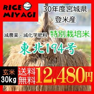30年度産 新米 宮城県登米産 特別栽培米東北194号30kg 玄米